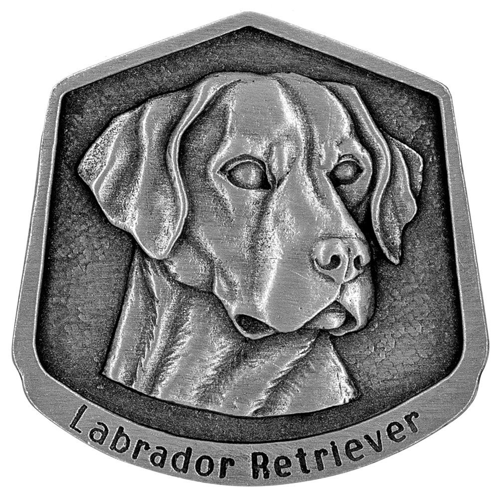 Labrador retriever magnet