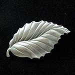 Beech Tree Leaf Fridge Magnet