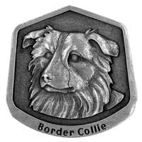 Border Collie magnet