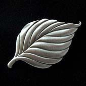 Dogwood Tree Leaf Magnet